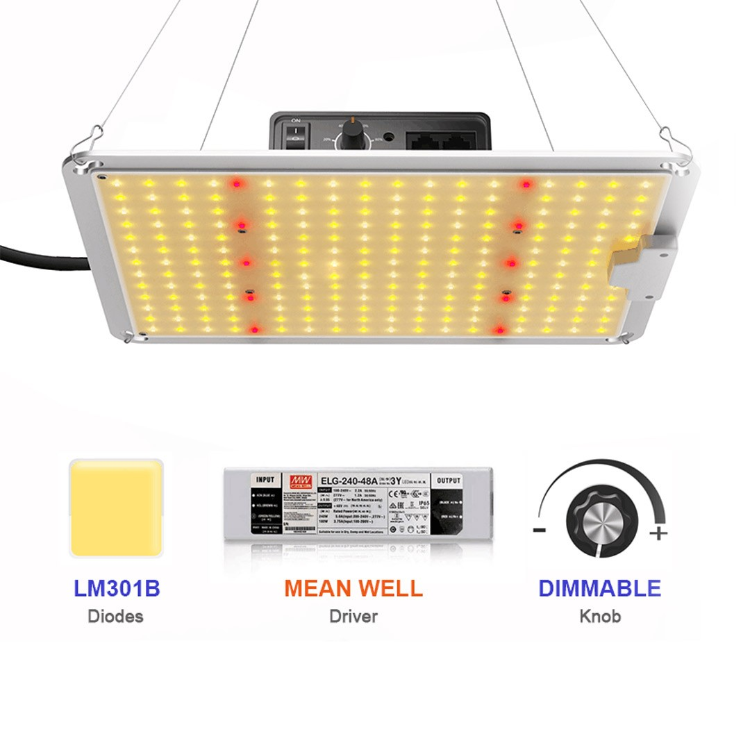 URBAN LED CFR 110 Quantum board