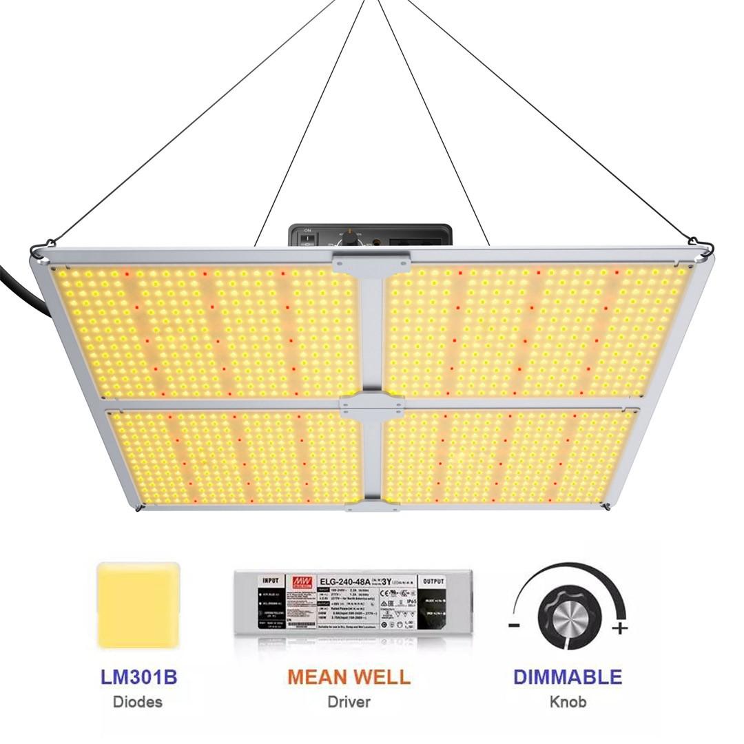 URBAN LED CFR 440 Quantum board